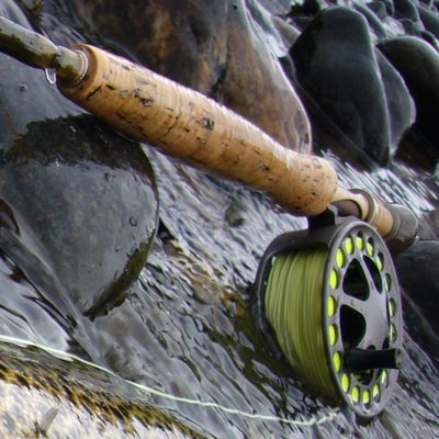 Madison River Fishing Reports